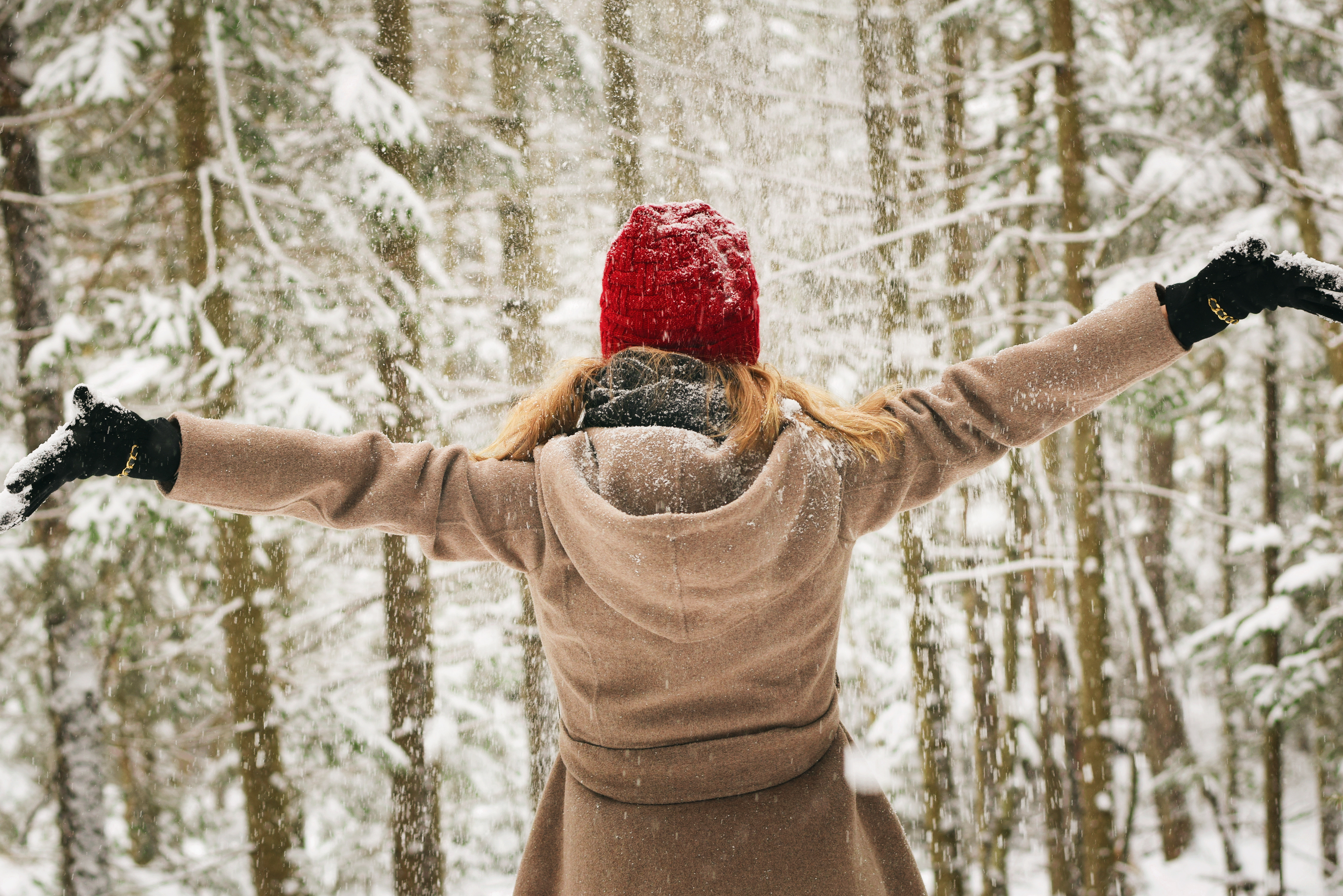 How to navigate the holidays with peace
